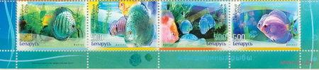 2006. 668-671. Аквариумные рыбы. Сцепка серия