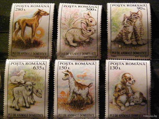 Румыния 1994 фауна Животный мир