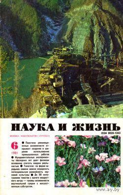 """Журнал """"Наука и жизнь"""", 1981, #6"""