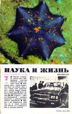 """Журнал """"Наука и жизнь"""", 1981, #7"""