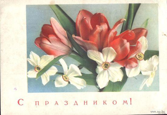 1966 год А.Шерстнёв С праздником!
