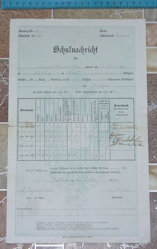 Какой-то документ ( аттестат ) Германия 1909 год