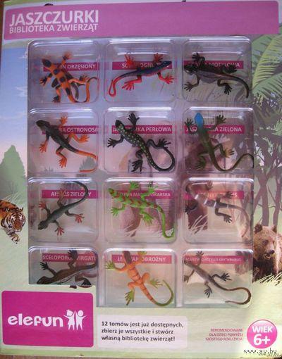 Коллекция ящерицы