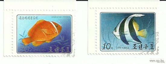 Фауна. Рыбы. КНДР 1986 г. (Корея)