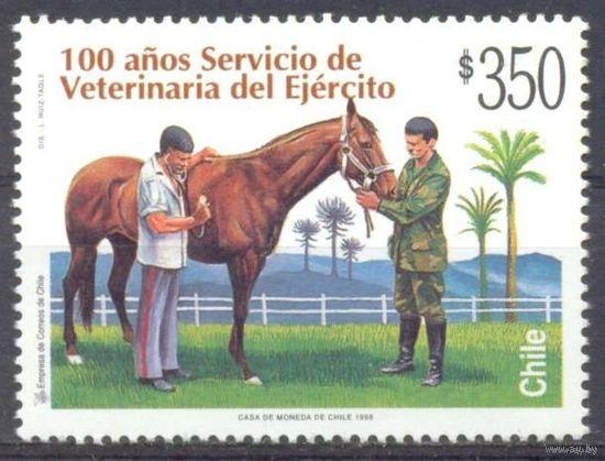 Чили лошадь