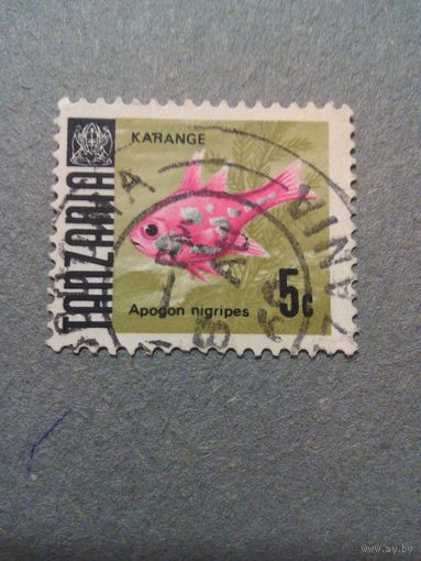 Танзания. Стандарт. 1967г. гашеная