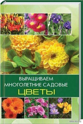 Выращиваем многолетние садовые цветы