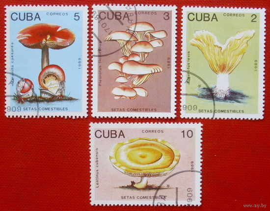Куба. Грибы. ( 4 марки ) 1989 года.