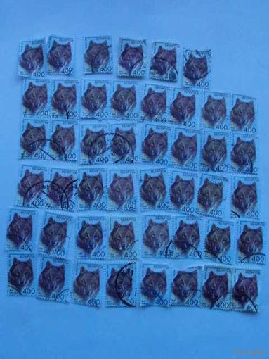 Беларусь марки 2008г Волк.  распродажа