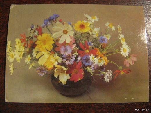 Цветы 1987г.