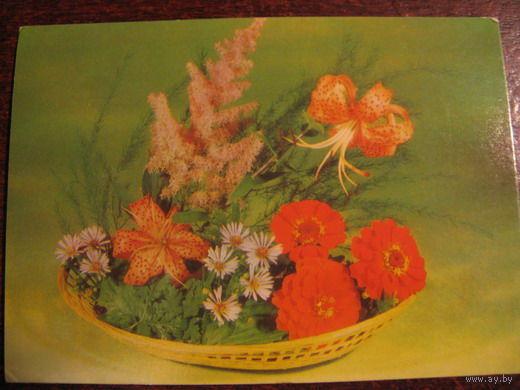 Цветы 1984г
